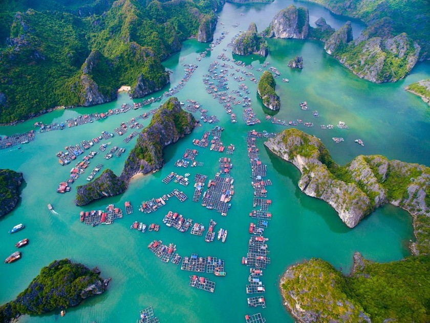 Can't-miss spots for Cat Ba sightseeing tour ảnh 2