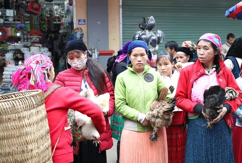 Meo Vac ethnic market becomes must-visit place in Ha Giang  ảnh 3