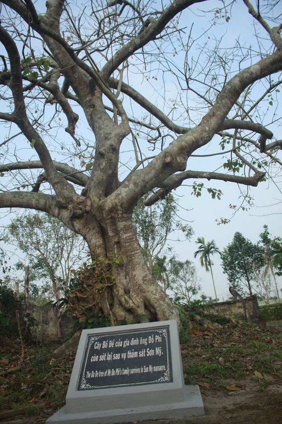 Quang Ngai Province celebrates 53 years of Son My massacre ảnh 7