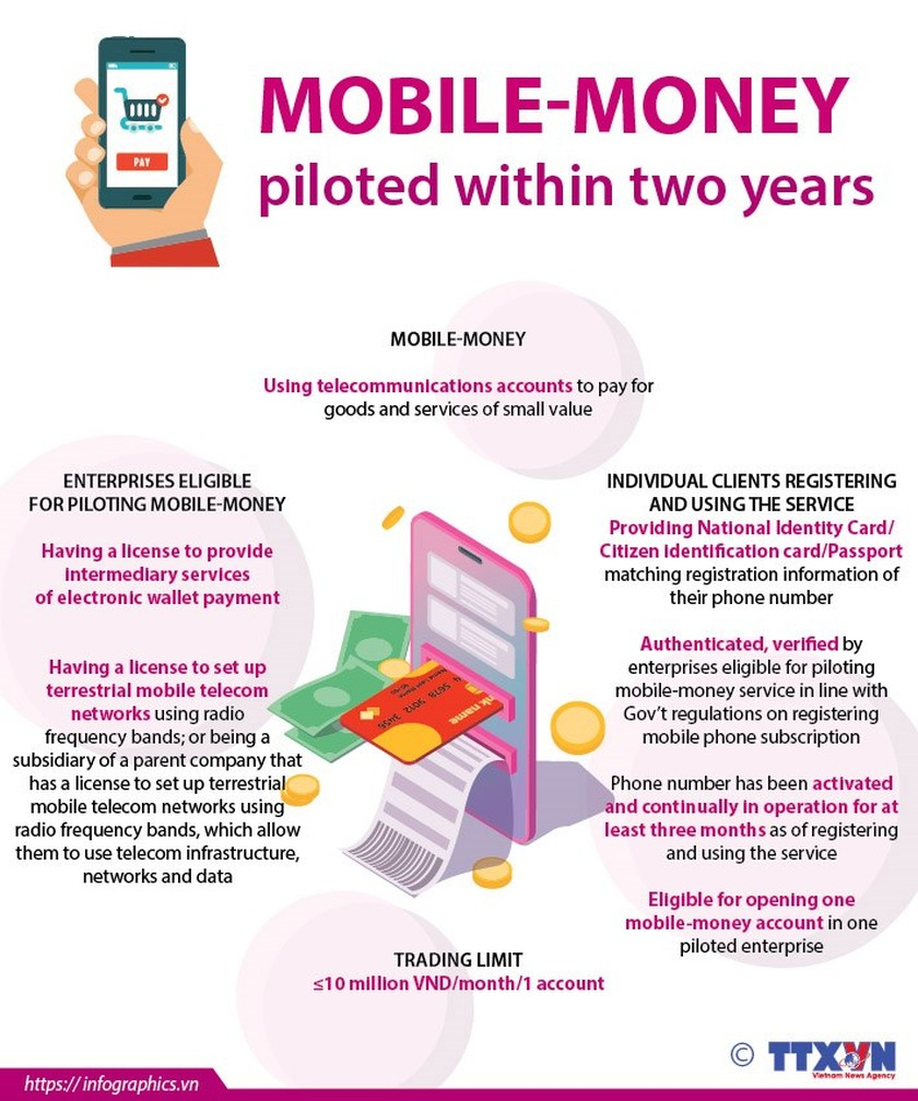 Mobile-money piloted within two years ảnh 1