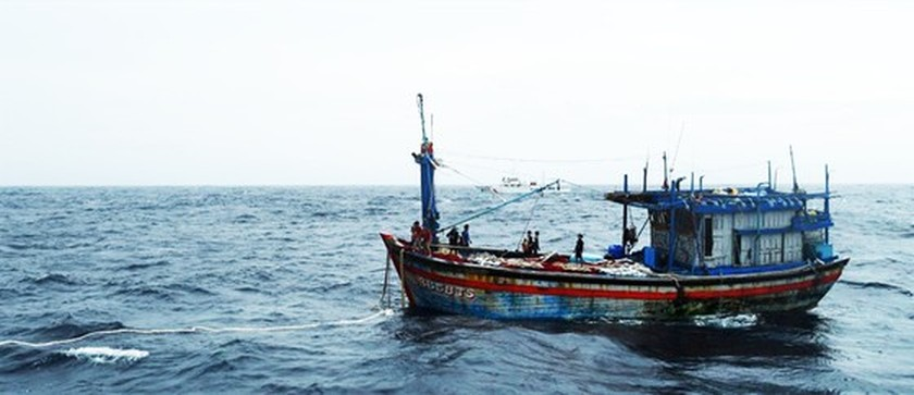 Binh Dinh Province successfully contacts with 12 missing fishermen  ảnh 1