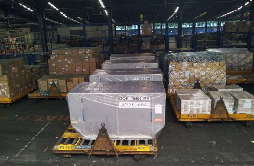 Tan Son Nhat airport to perform automatic management system for warehouses ảnh 1