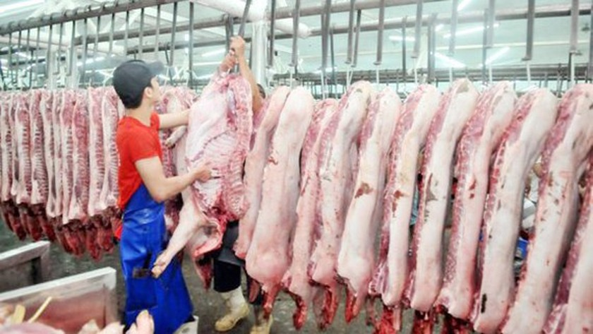 Ho Chi Minh City lessens selling prices of pork  ảnh 1