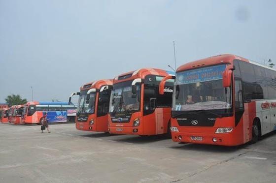 Quang Ngai halts passenger vehicles operation from HCMC, vice versa  ảnh 1