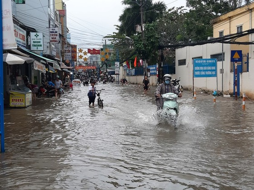 Mekong Delta able to reach levels 1-2 flood peak in 2021 ảnh 1