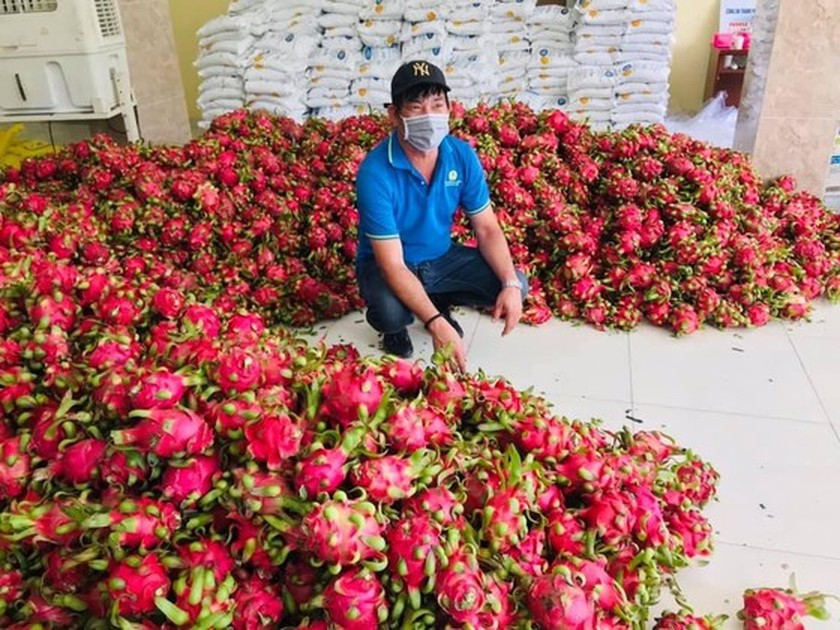Eggs, dragon fruits, rice, chicken transported to rental houses in HCMC ảnh 2