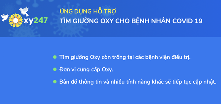 HCMC launches app Oxy 247 to help Covid-19 infections ảnh 1