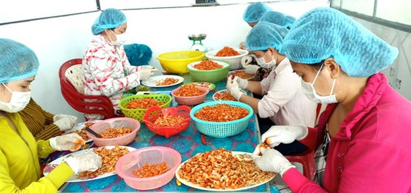 Traditional trade villages step-by-step restore production activities ảnh 2