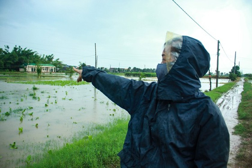 Central localities strengthen flood prevention operations ảnh 10