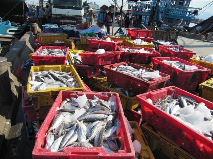 Vietnam to curb illegal fishing ảnh 1