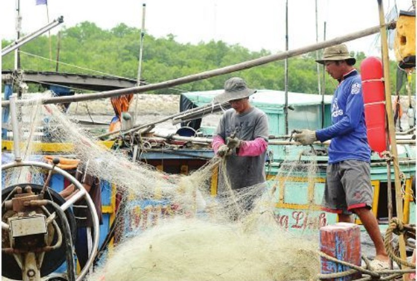 Fishing boats anchor at a shelter in Ba Ria-Vung Tau province