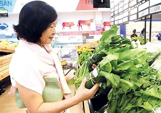 Plastic waste elimination efforts underway in Vietnam ảnh 5