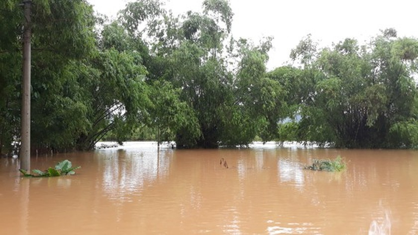 Quang Binh swamped by floodwaters ảnh 3