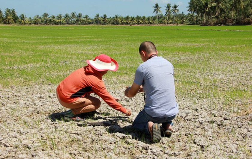 Mekong Delta copes with drought, salt intrusion during Tet holiday ảnh 10