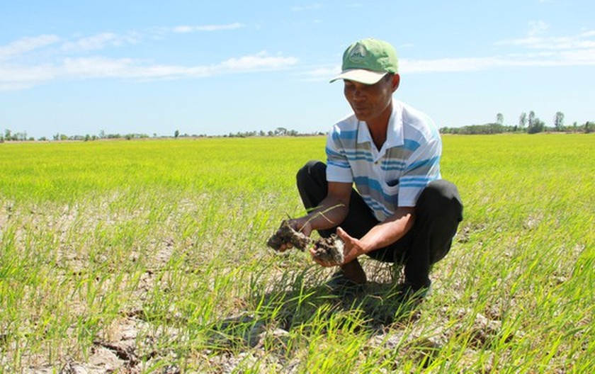 Mekong Delta copes with drought, salt intrusion during Tet holiday ảnh 9