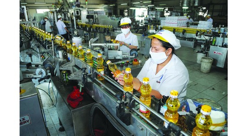 HCMC suggested to develop recovery program for post-COVID-19 economy ảnh 1