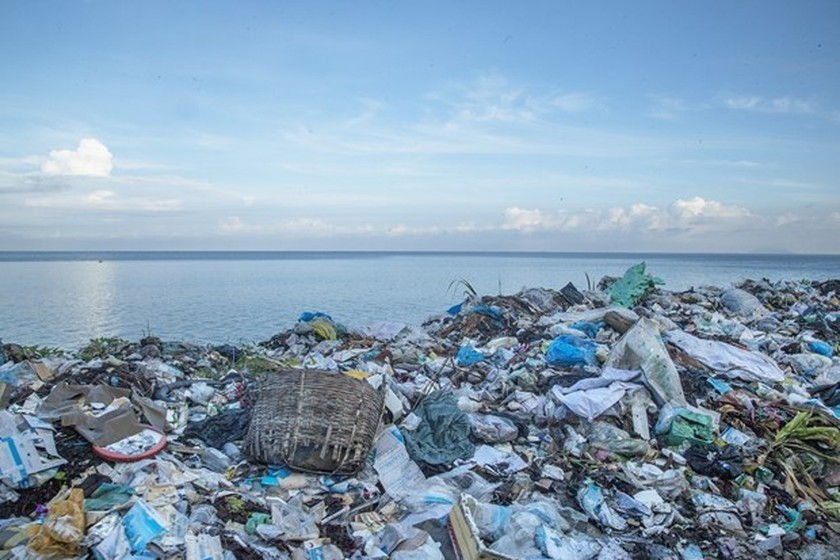 Efforts made to reduce plastic waste in oceans ảnh 1