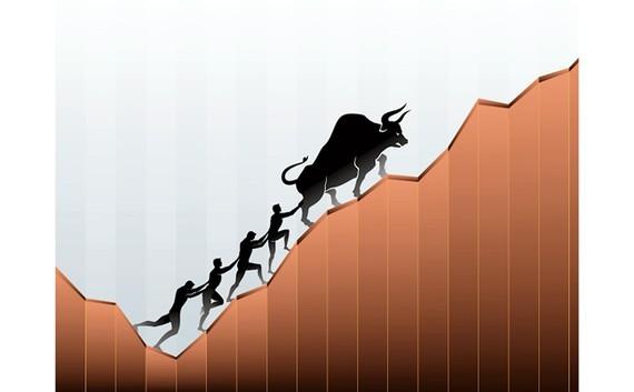 Stock market momentum calls for restrain ảnh 1