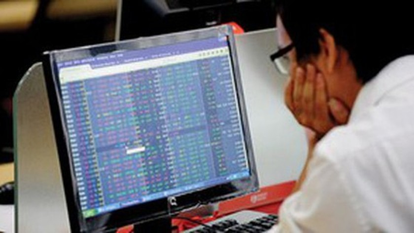 Stock market continues to draw new investors ảnh 1