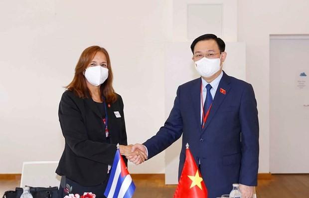 NA Chairman meets Cuba's legislator in Austria ảnh 1