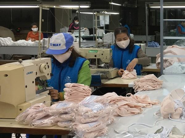 Doanh nghiệp xuất khẩu tăng 'sức đề kháng' giữa dịch Covid-19 ảnh 1