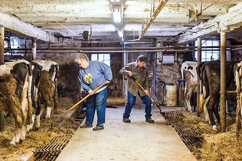 Hoàng hôn nông trại nhỏ tại Mỹ ảnh 1