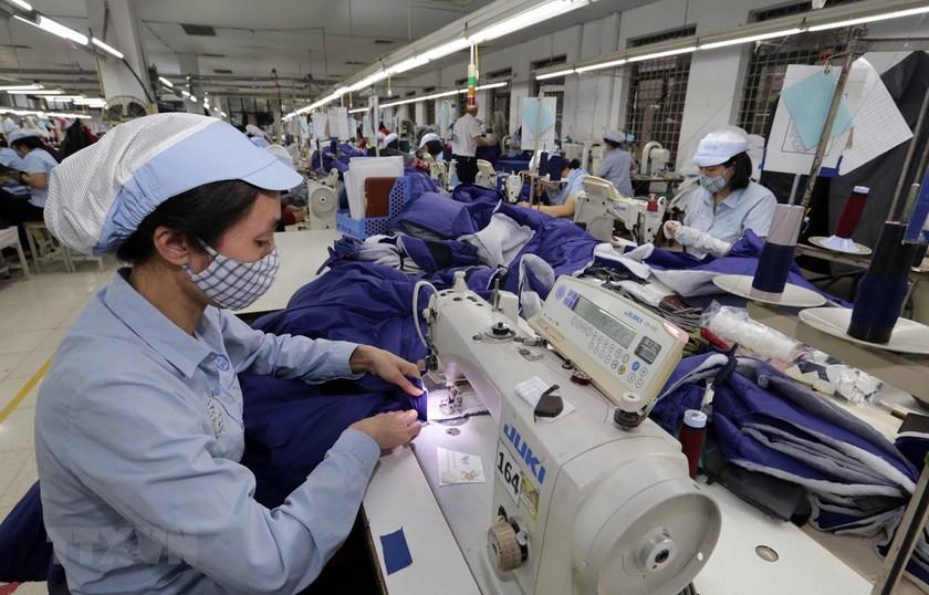 May hàng xuất khẩu tại Tổng Công ty may Đức Giang. (Ảnh minh họa: Trần Việt/TTXVN)