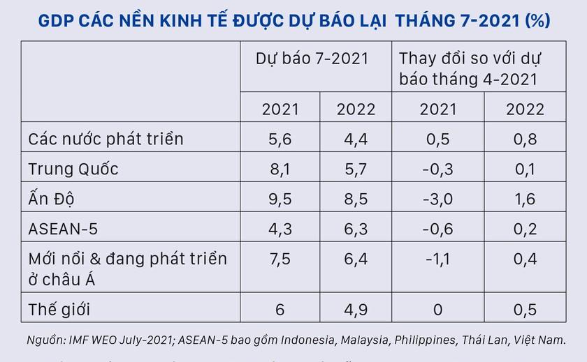 Sức ép các nền kinh tế mới nổi  và đang phát triển ảnh 2