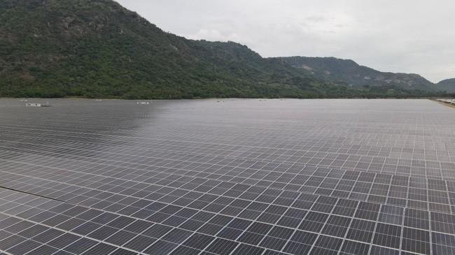 Sao Mai có thêm 1.000 tỷ doanh thu mỗi năm từ điện mặt trời ảnh 1