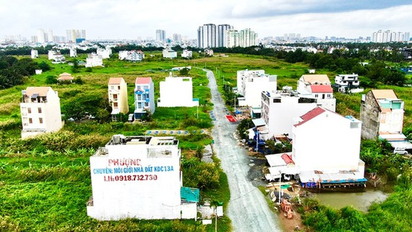 Abandoned, underused land in HCMC requires urgent attention ảnh 1