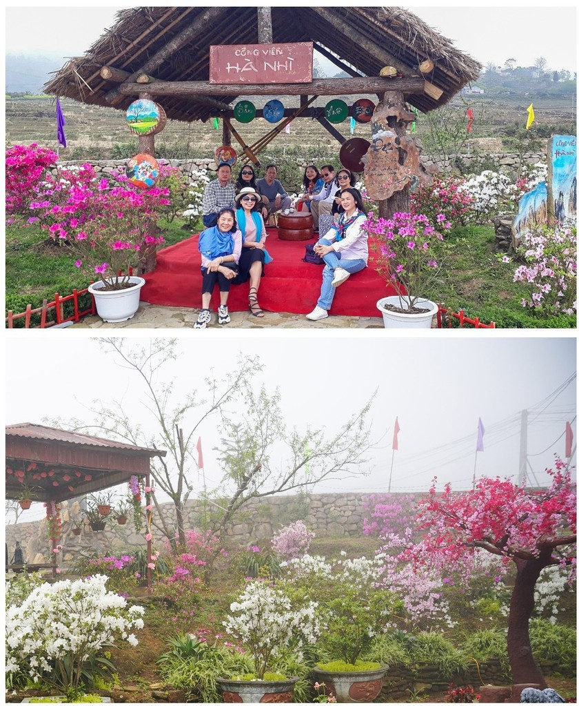 """Rhododendron school"" a tourism hit in Lao Cai ảnh 10"