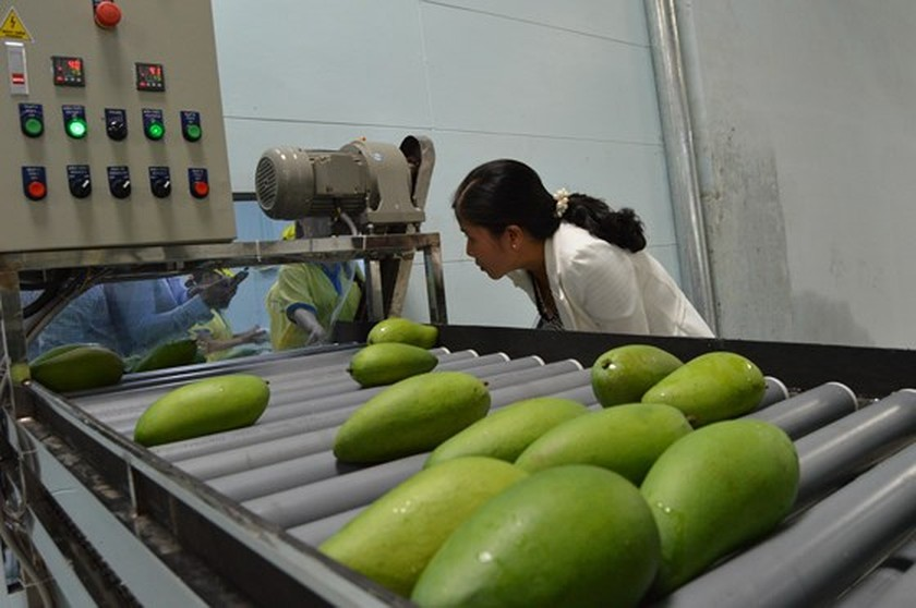 More than US$22 billion of FDI capital invested in Mekong Delta provinces ảnh 1