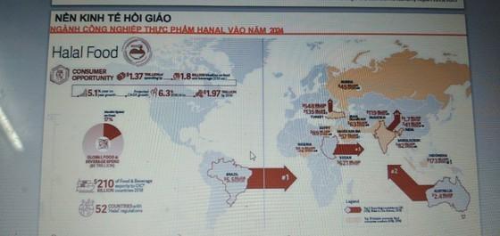 Overseas Vietnamese seek to export farm produce, medical equipment amid Covid-19 ảnh 1