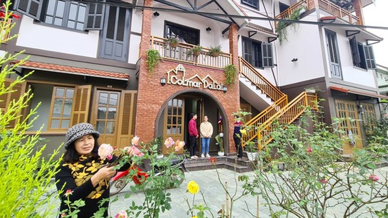 Visitors return to tourism triangle Dalat – Nha Trang – Phan Thiet ảnh 2