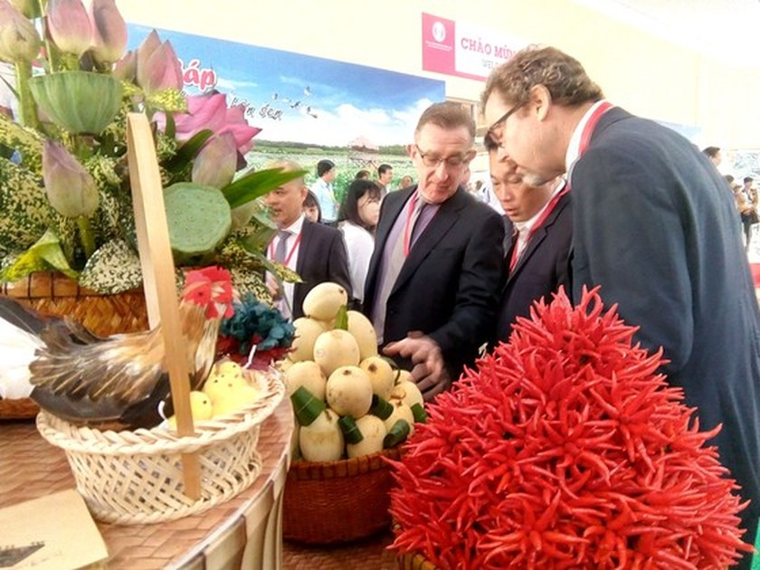 Investment attraction in Mekong Delta flourishes ảnh 1