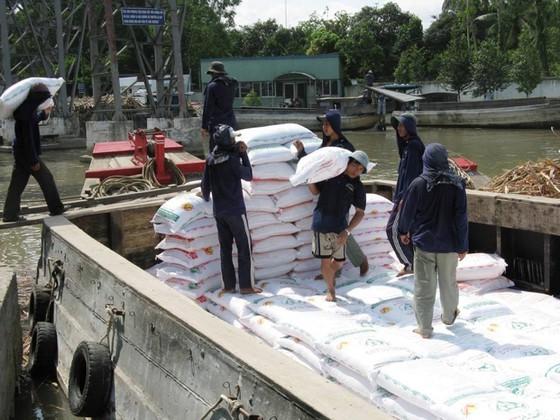 Imported sugar hurts its domestic counterpart ảnh 1