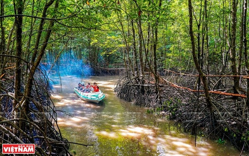 Vietnam's southernmost province a magnet for tourists ảnh 1