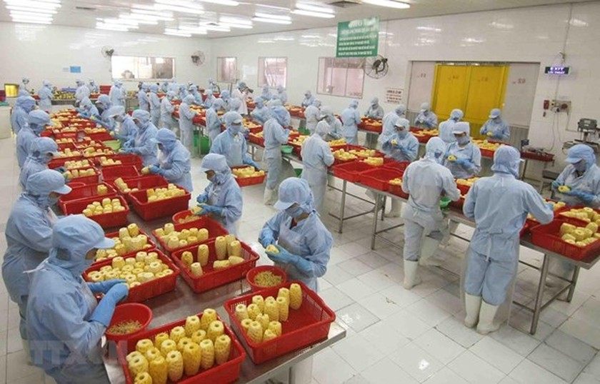 Manufacturing and processing sector playing key role in FDI attraction ảnh 1