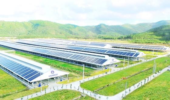 Many enterprises return to domestically-made raw materials ảnh 1