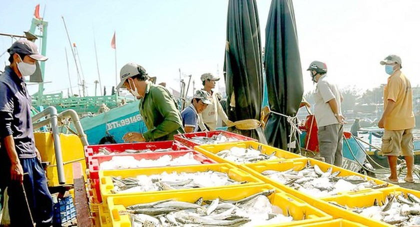 Fishers overcome difficulties to set sail ảnh 1