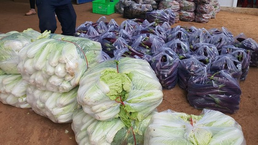 Zero-dong vegetables massively flock to HCMC from Da Lat ảnh 5