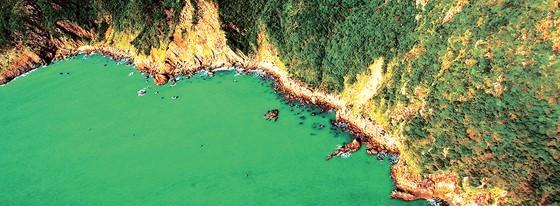 Photos feature beauty of Vietnam's sea, islands ảnh 3