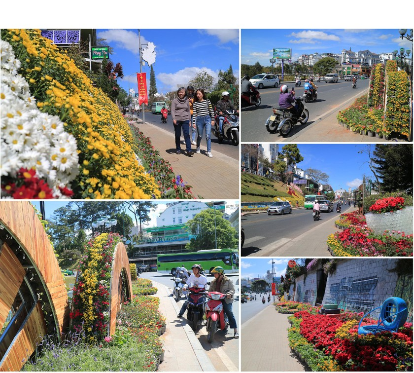 Lam Dong province ready for upcoming Da Lat Flower Festival ảnh 2