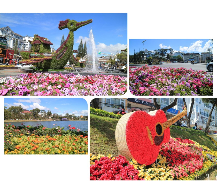 Lam Dong province ready for upcoming Da Lat Flower Festival ảnh 3