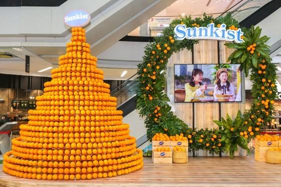 U.S. Navel oranges sold in Vietnam ảnh 1