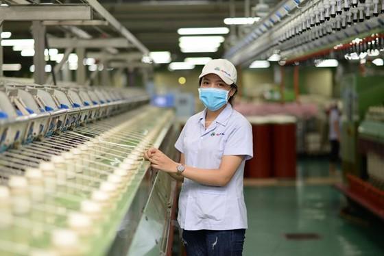 Local textile manufacturer supplies 300,000-400,000 face masks per day ảnh 1