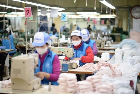 Local textile manufacturer supplies 300,000-400,000 face masks per day ảnh 2
