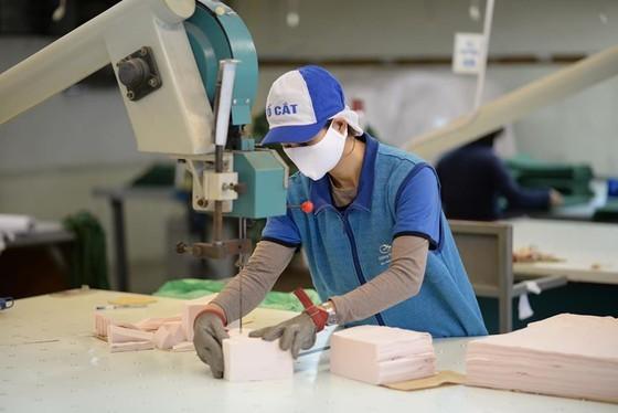Local textile manufacturer supplies 300,000-400,000 face masks per day ảnh 3