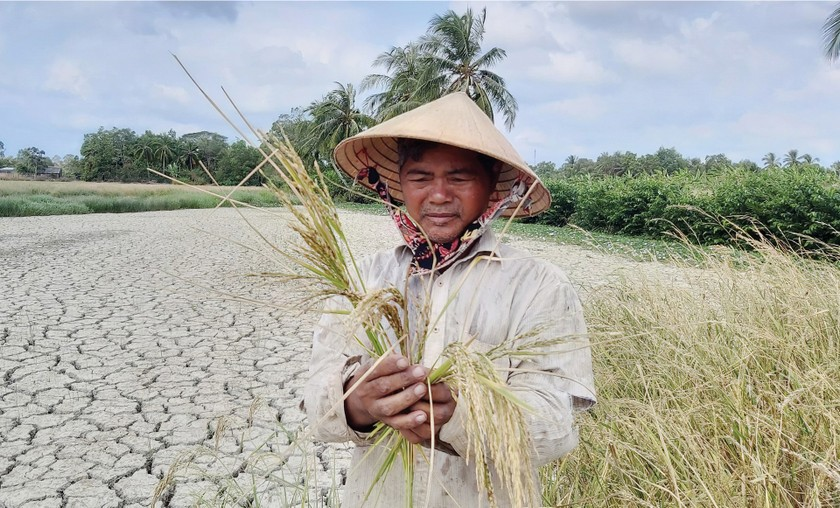 Mekong Delta grapples with drought, saltwater intrusion ảnh 3