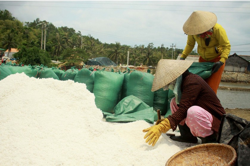 Sa Huynh salt farmers endure falling prices ảnh 3
